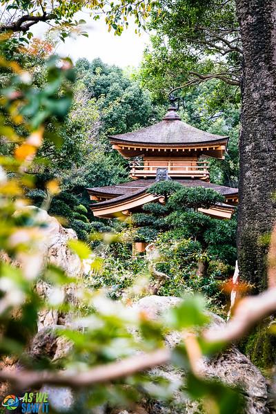 Nan-Lian-Garden-00332.jpg