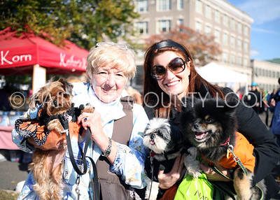 Adopt a Dog - Howl & Prowl 10-27-13