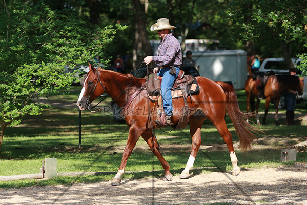 100613 ACTHA Competitive Trail Ride