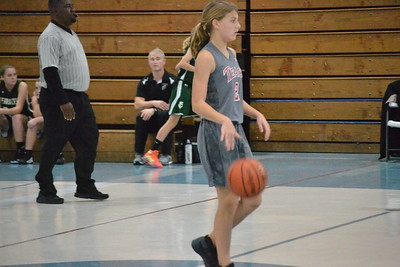 TEACH — Terra Ceia girls basketball