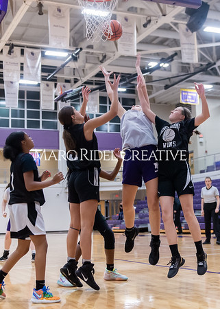 Broughton girls basketball vs Wake Forest. November 14, 2019. D4S_9922