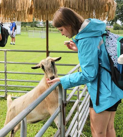 Welcome Week - Petting Zoo