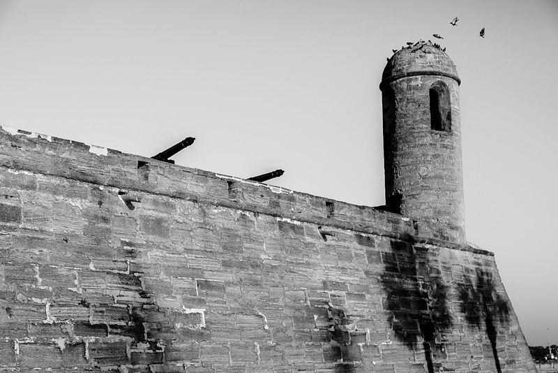 "Castillo de San Marcos ""Doves on the Tower"""