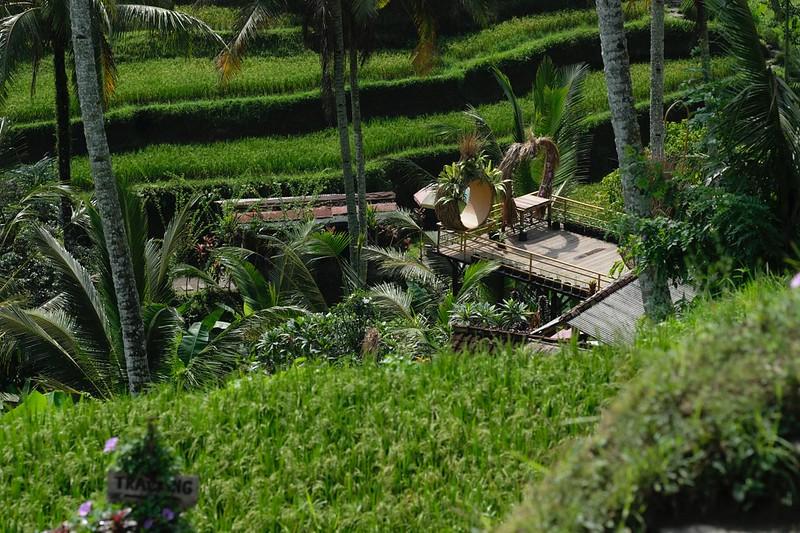 Trip of Wonders Day 11 @Bali 0057.JPG