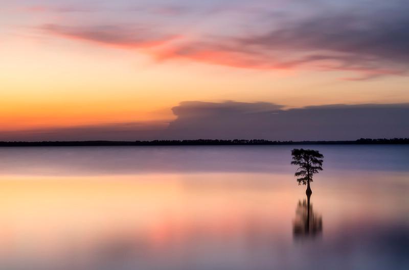 Isolation - Gary Stiles