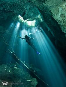 Cenotes & Whalesharks