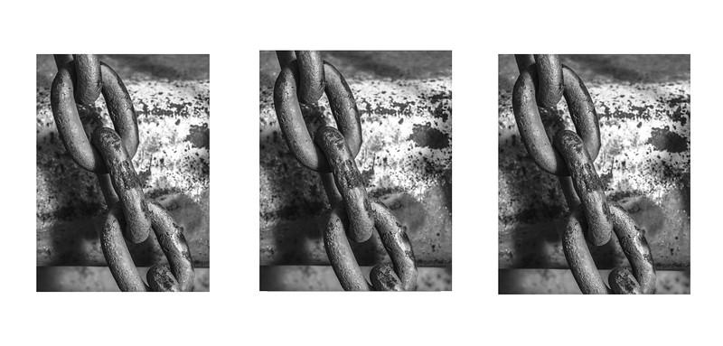 5956 Chain tryptichB & W .jpg