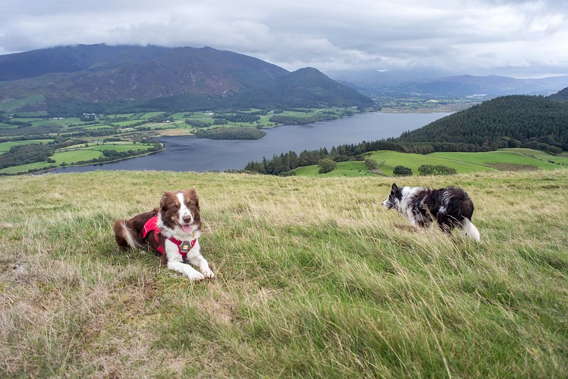 Fri 7th Sep : Sale Fell : At The Viewpoint Bench