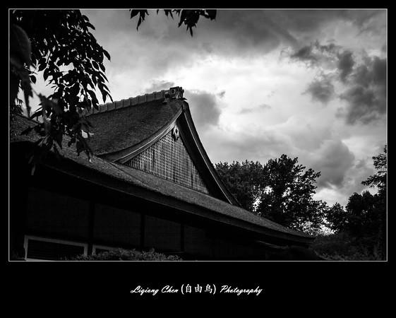 _MG_4889-M.jpg