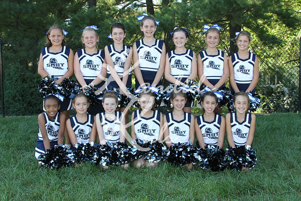 2012 Cheer Teams