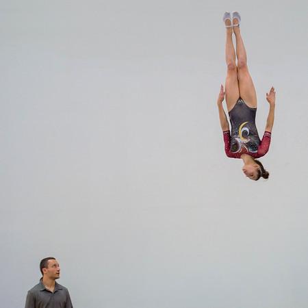 World Elite Gymnastics 4-9-16