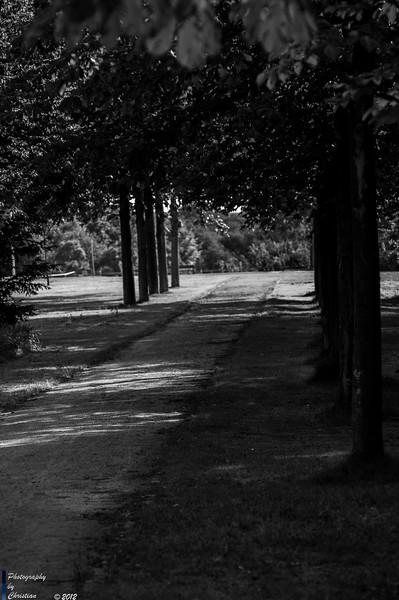 19.07.2015-Nordsternpark
