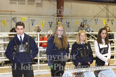 2010 Spring Branch FFA Fur & Breeding Rabbits