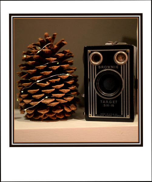 2017-12-25 Christmas Eve V(6) Camera and Pine Cone Two Brownies.JPG