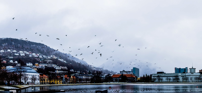 Norway_Odyssey_261.jpg
