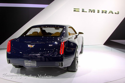 The North American International Auto Show 2014 Charity Preview