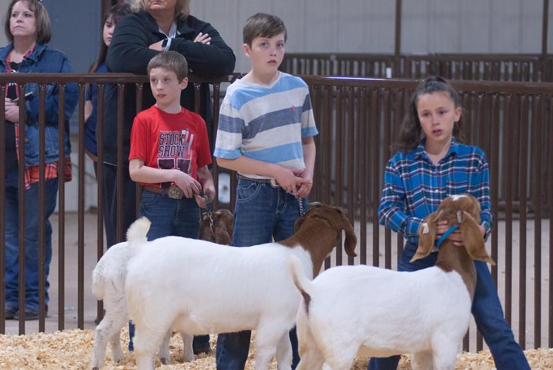 kay_county_showdown_goats_20191207-122.jpg