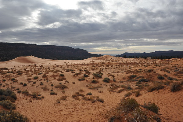 Coral Pink Sand Dunes State Park - 11 16 2017