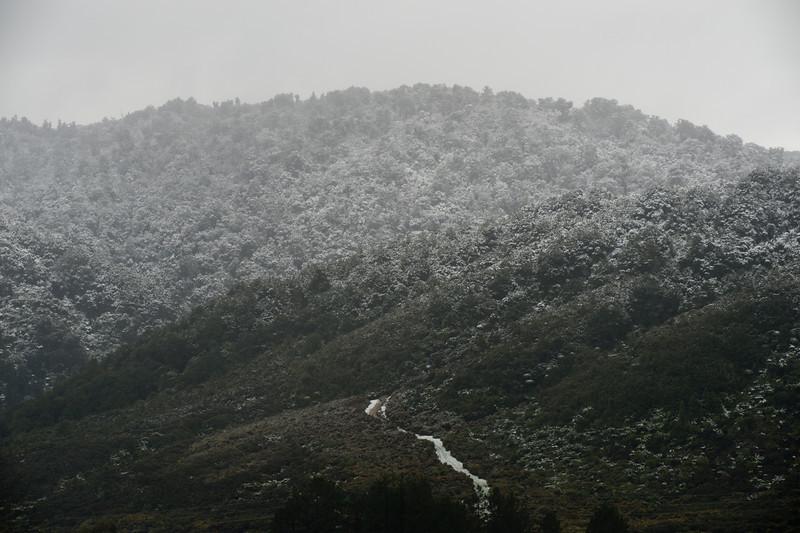 SnowInWelly12448.jpg
