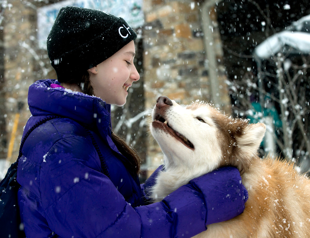 ". Kailin Edwards of Chagrin Falls greets Dallas, a Siberian Husky owned by Anna Schender, at Geauga Park District\'s Frozen Fest at The West Woods in 2015. The third annual Frozen Fest will be noon to 4 p.m. Jan. 15 at The West Woods in Russell and Newbury townships. Entertainment includes face painting, craft workshops, ice carvings, demonstrations, hikes, games and more. For more information, visit <a href=""http://www.geaugaparkdistrict.org/special-events.shtml\"">geaugaparkdistrict.org/special-events.shtml</a>. (News-Herald file)"