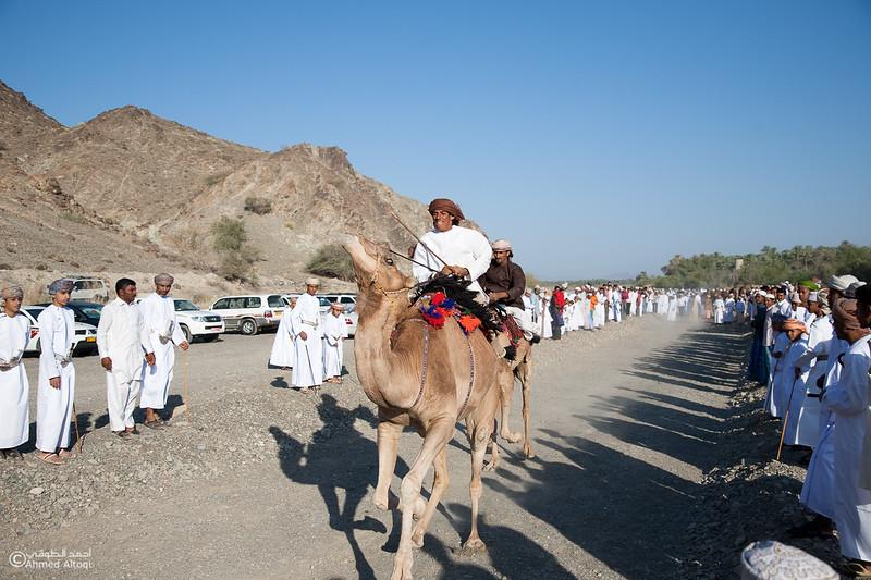 Camel Race  (19).jpg