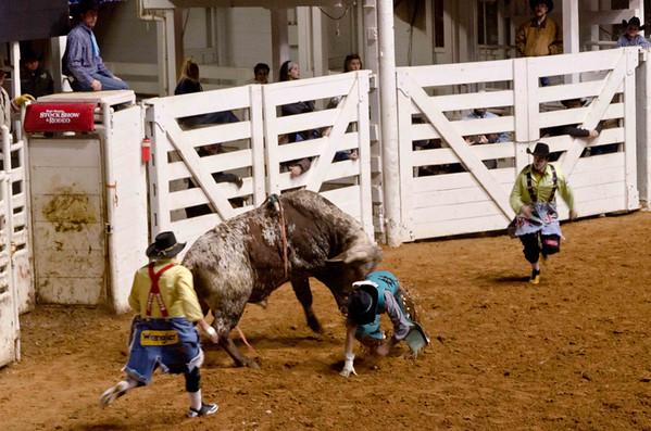 Stock Show+Rodeo Fri 13 Feb13