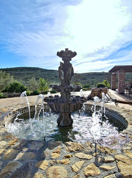 5175 Via El Cerro TO  pool (11).jpg