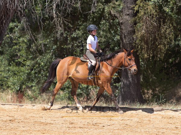 Rider 102- Hunters