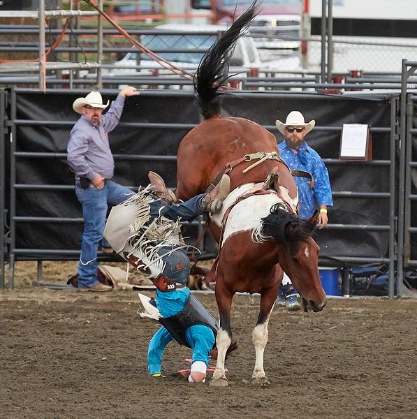Enumclaw Rodeo 2019 - _15A5981.jpg