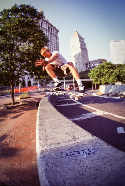 Danny Way Brooklyn Banks 94
