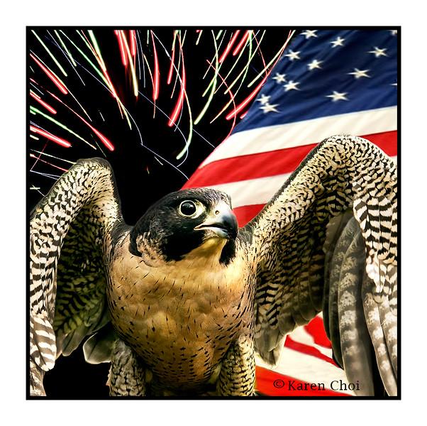 bird flag and fireworks sm.jpg