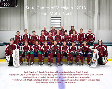 State Game of Michigan