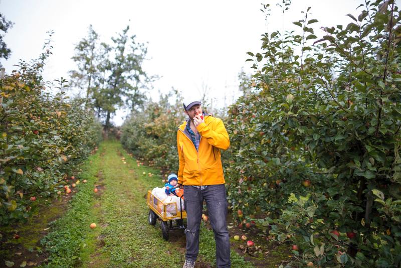 CIK-181007-apples and pumpkins-API_5731.jpg