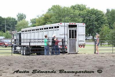 Renville Co Fair Youth 2-Person Sort 2014