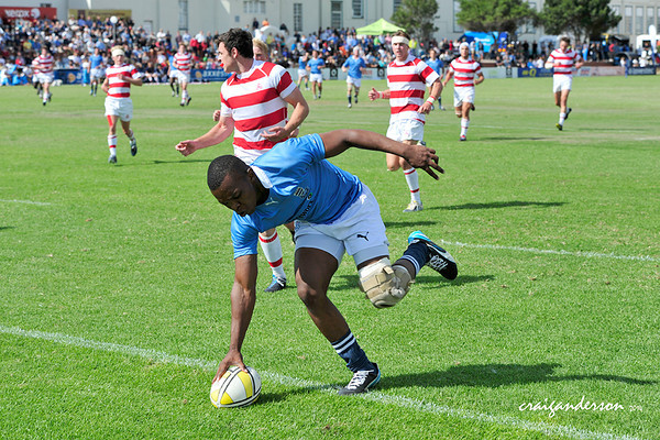 Grey Rugby Festival - Grey vs Michaelhouse