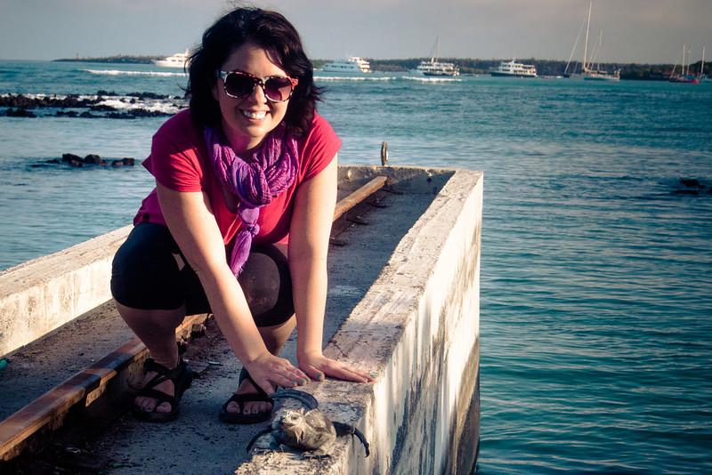 wild kingdom marine iguana.jpg
