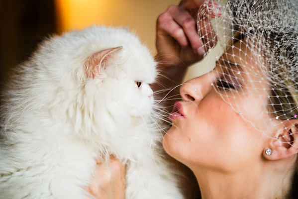 Bechir + Alessandra // Wedding in France