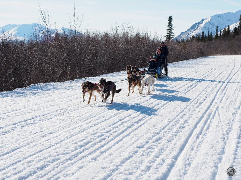 20190326_alaska_trip_alpine_creek_lodge_1664.jpg