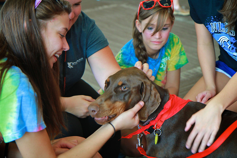 20130818_therapydogs_MH002.jpg