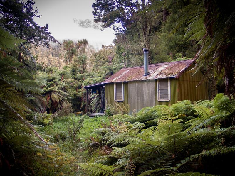 Luxury in the New Zealand bush.