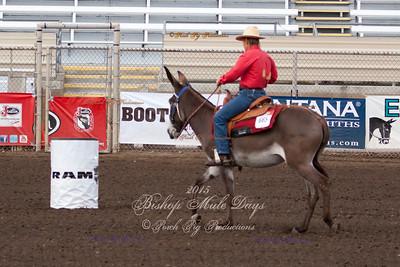 Donkey Barrels