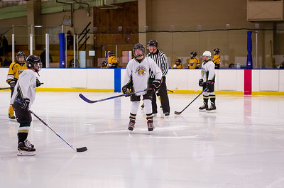Game 2 - Berkshire Bruins @ Northern Berkshire, 12U-C