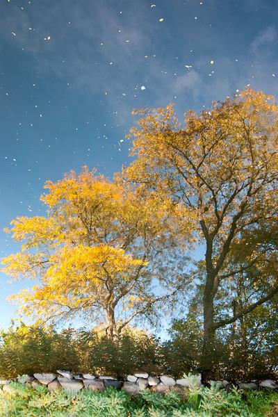 Boston, Massachusetts October 2012