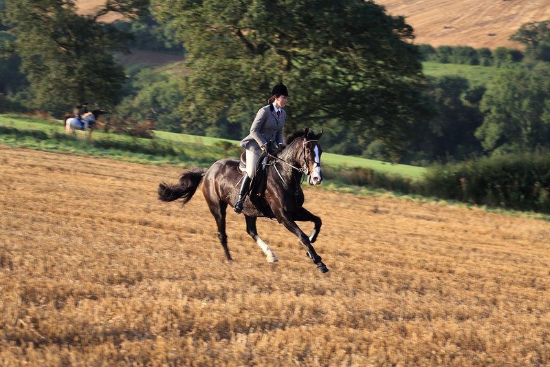 Cantering by