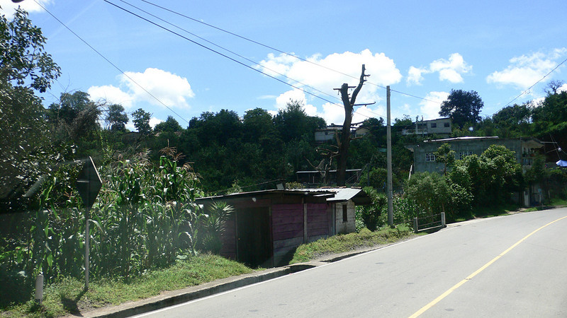 Guatemala 2010  118.jpg