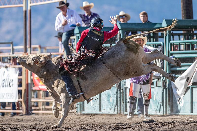 2019 Rodeo 5 (121 of 574).jpg