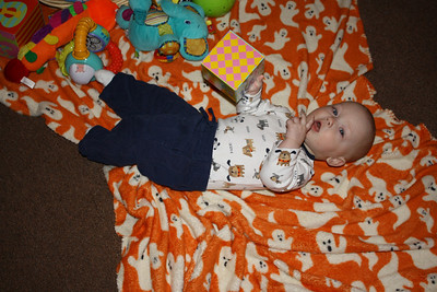 Avery at Seven Months