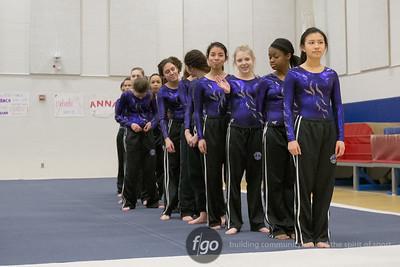 1-21-15 Minneapolis Southwest v Minneapolis Edison-Henry-North Gymnastics at St. Paul Highland Park