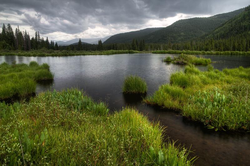 Geneva Creek Beaver Pond in the Rain