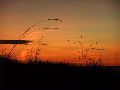 Dhudupu Outstation sunset - June 2008